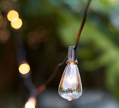 Edison Type String Lights : Edison Bulb Vintage Style Patio String Light - 10 Bulbs - 10 Feet - Shop Now